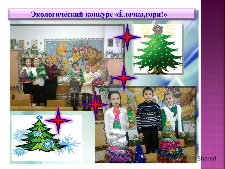 Экологический конкурс «Ёлочка,гори!»