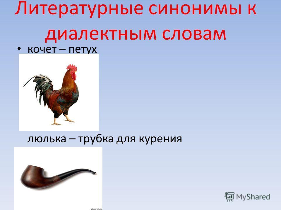 Литературные синонимы к диалектным словам кочет – петух люлька – трубка для курения
