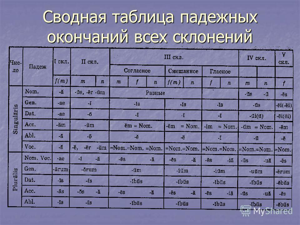 Сводная таблица падежных окончаний всех склонений
