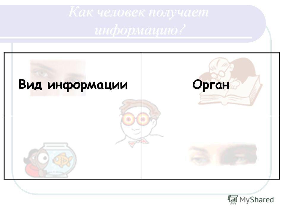 Вид информацииОрган