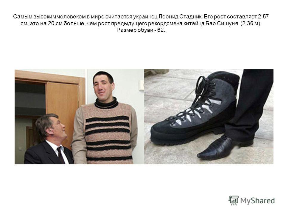 Самым высоким человеком в мире считается украинец Леонид Стадник. Его рост составляет 2.57 см, это на 20 см больше, чем рост предыдущего рекордсмена китайца Бао Сишуня (2.36 м). Размер обуви - 62.