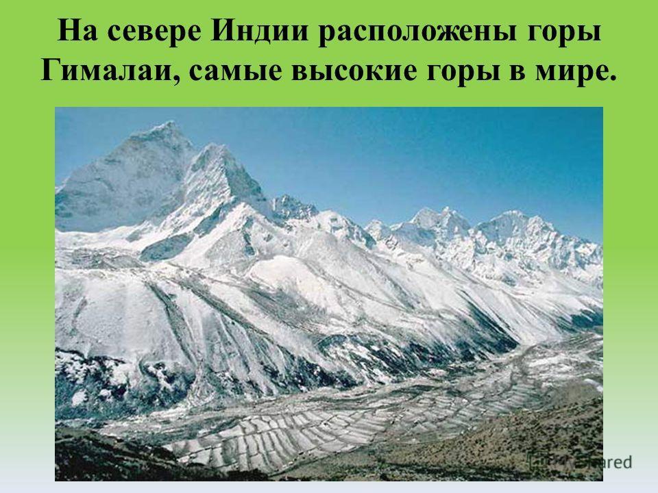 На севере Индии расположены горы Гималаи, самые высокие горы в мире.