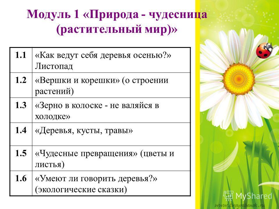 Модуль 1 «Природа - чудесница (растительный мир)» 1.1«Как ведут себя деревья осенью?» Листопад 1.2«Вершки и корешки» (о строении растений) 1.3«Зерно в колоске - не валяйся в холодке» 1.4«Деревья, кусты, травы» 1.5«Чудесные превращения» (цветы и листь