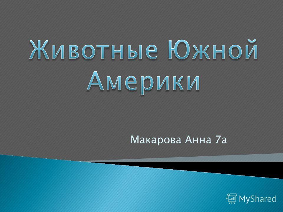 Макарова Анна 7а