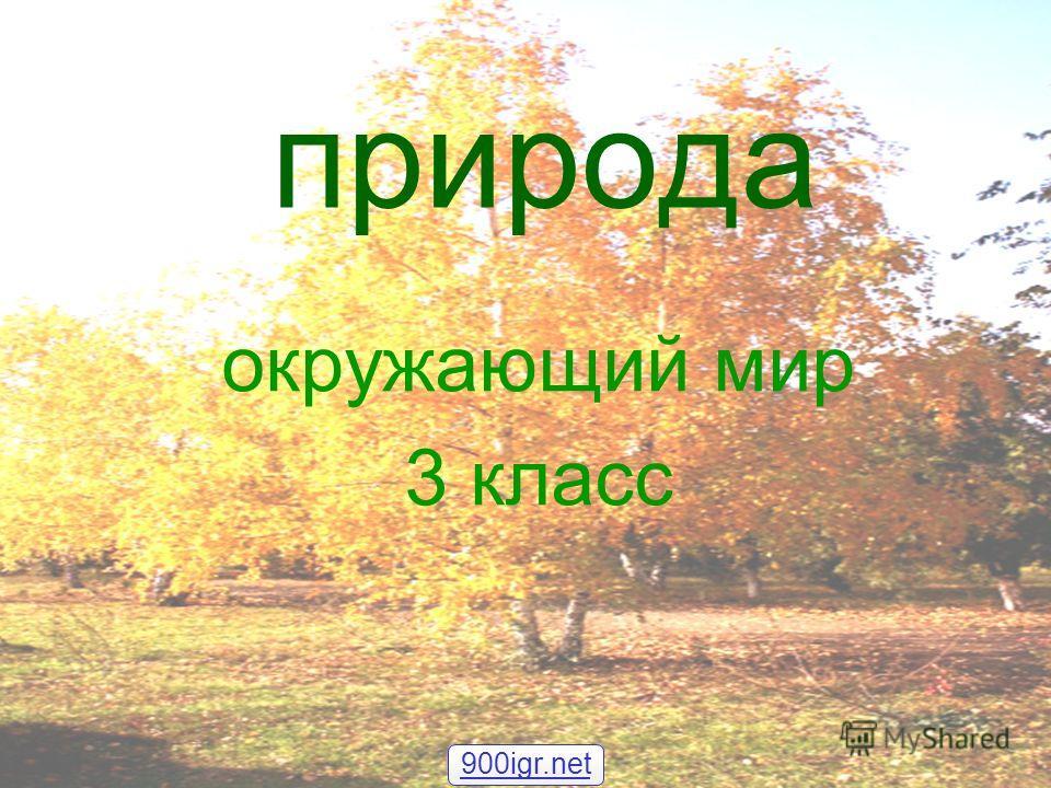 природа окружающий мир 3 класс 900igr.net