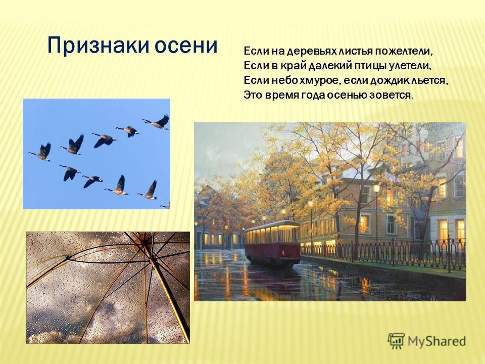 Признаки осени Если на деревьях листья пожелтели, Если в край далекий птицы улетели, Если небо хмурое, если дождик льется, Это время года осенью зовется.