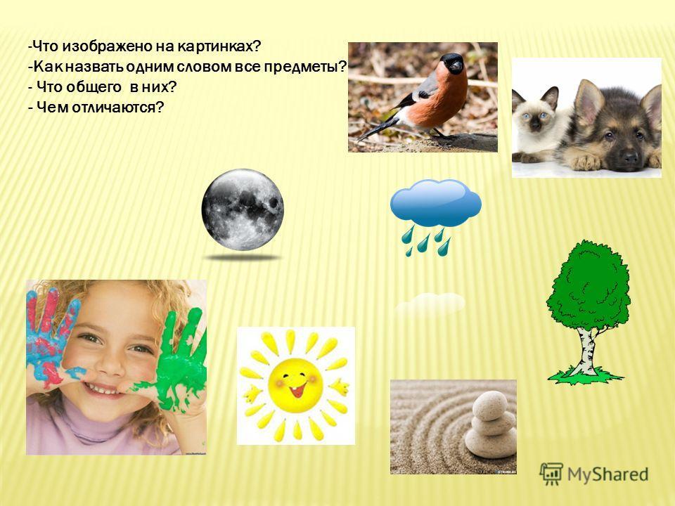 -Что изображено на картинках? -Как назвать одним словом все предметы? - Что общего в них? - Чем отличаются?