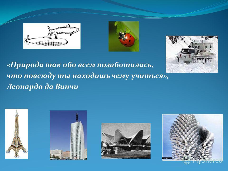 «Природа так обо всем позаботилась, что повсюду ты находишь чему учиться», Леонардо да Винчи