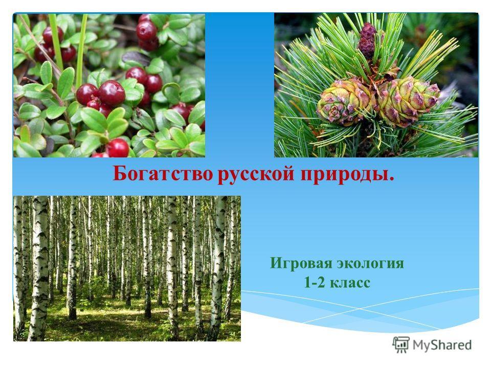 Богатство русской природы. Игровая экология 1-2 класс