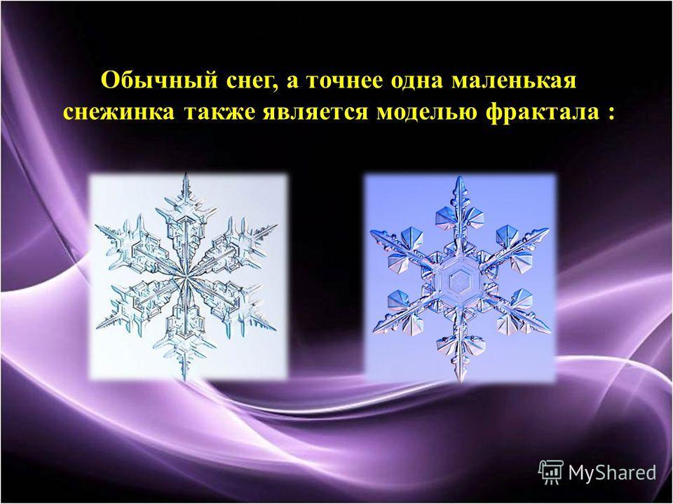 Обычный снег, а точнее одна маленькая снежинка также является моделью фрактала :
