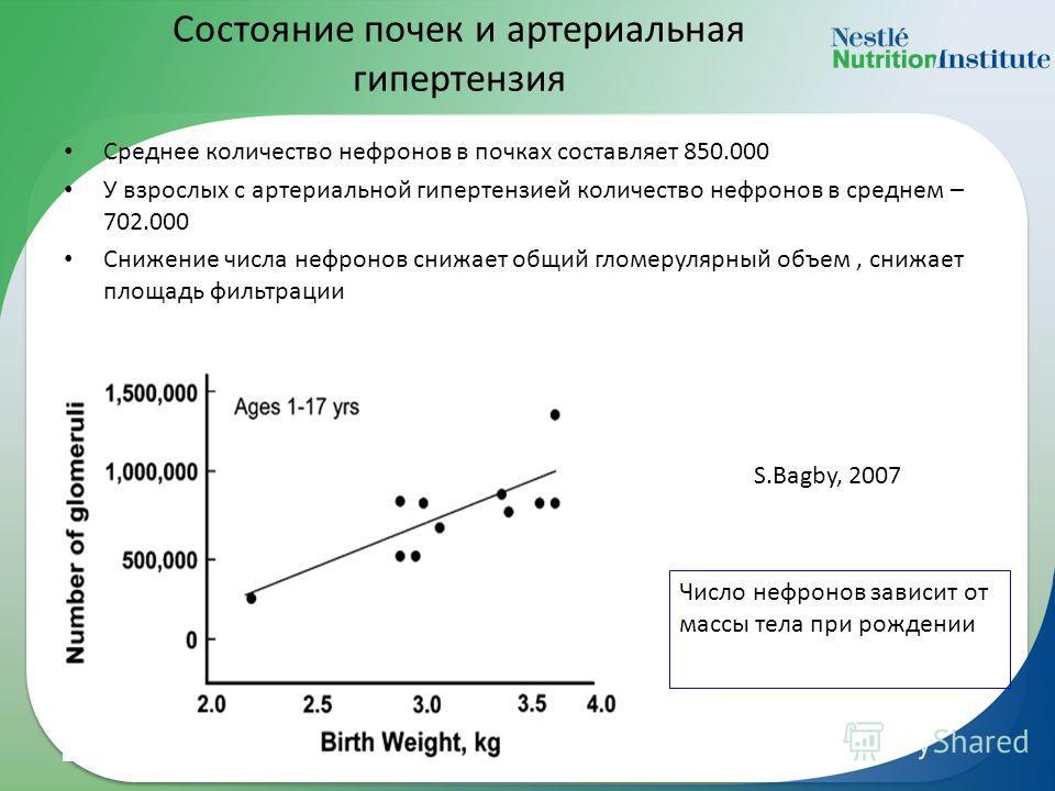 Состояние почек и артериальная гипертензия Среднее количество нефронов в почках составляет 850.000 У взрослых с артериальной гипертензией количество нефронов в среднем – 702.000 Снижение числа нефронов снижает общий гломерулярный объем, снижает площа