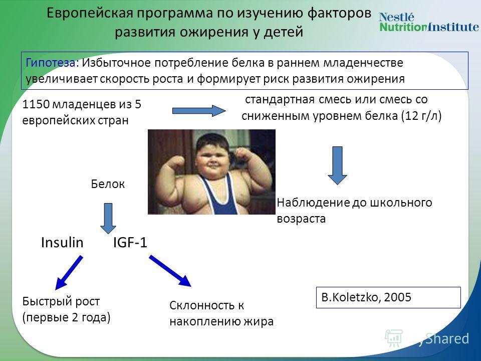 Европейская программа по изучению факторов развития ожирения у детей 1150 младенцев из 5 европейских стран Гипотеза: Избыточное потребление белка в раннем младенчестве увеличивает скорость роста и формирует риск развития ожирения стандартная смесь ил