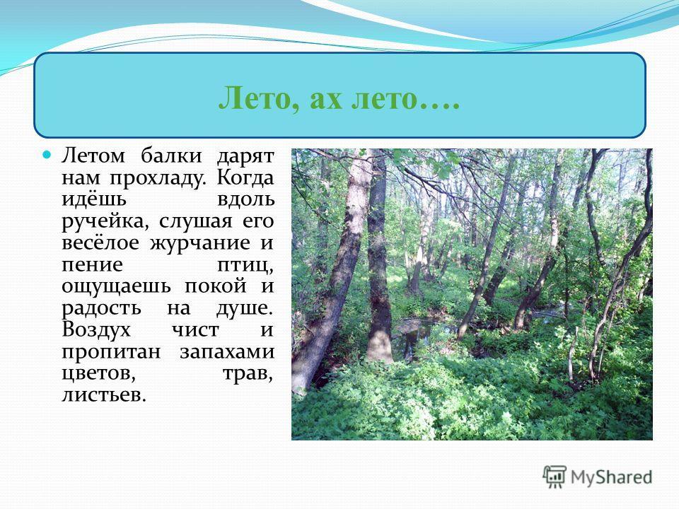 Летом балки дарят нам прохладу. Когда идёшь вдоль ручейка, слушая его весёлое журчание и пение птиц, ощущаешь покой и радость на душе. Воздух чист и пропитан запахами цветов, трав, листьев. Лето, ах лето….