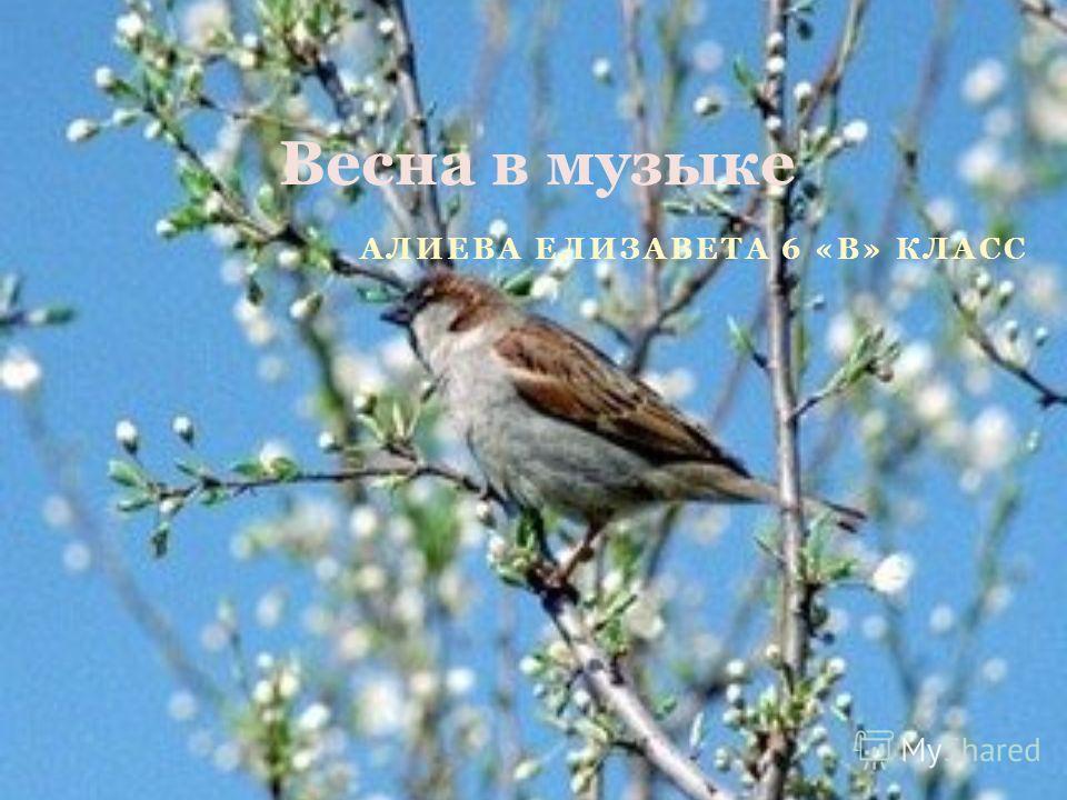 АЛИЕВА ЕЛИЗАВЕТА 6 «В» КЛАСС Весна в музыке