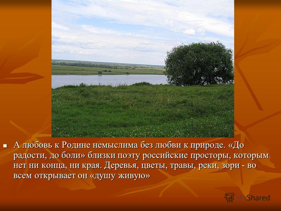 А любовь к Родине немыслима без любви к природе. «До радости, до боли» близки поэту российские просторы, которым нет ни конца, ни края. Деревья, цветы, травы, реки, зори - во всем открывает он «душу живую» А любовь к Родине немыслима без любви к прир