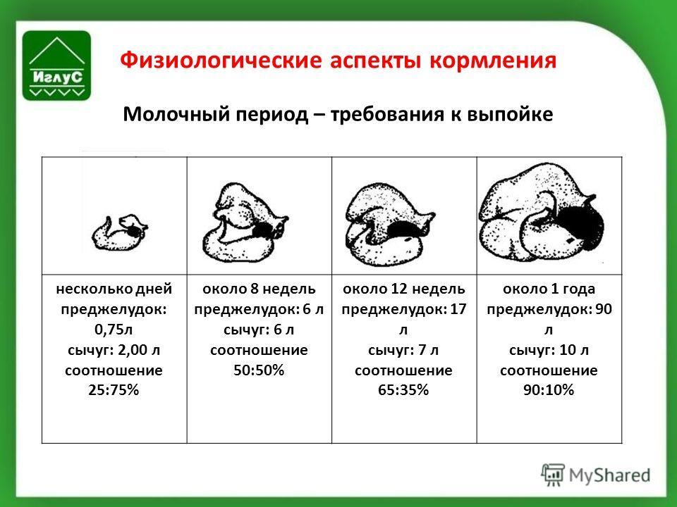 Физиологические аспекты кормления Молочный период – требования к выпойке несколько дней преджелудок: 0,75л сычуг: 2,00 л соотношение 25:75% около 8 недель преджелудок: 6 л сычуг: 6 л соотношение 50:50% около 12 недель преджелудок: 17 л сычуг: 7 л соо