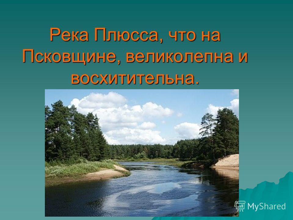 Река Плюсса, что на Псковщине, великолепна и восхитительна.