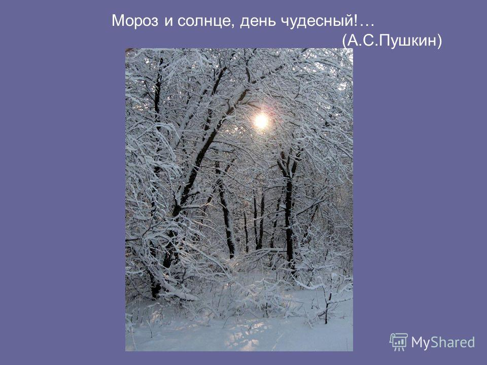 Мороз и солнце, день чудесный!… (А.С.Пушкин)