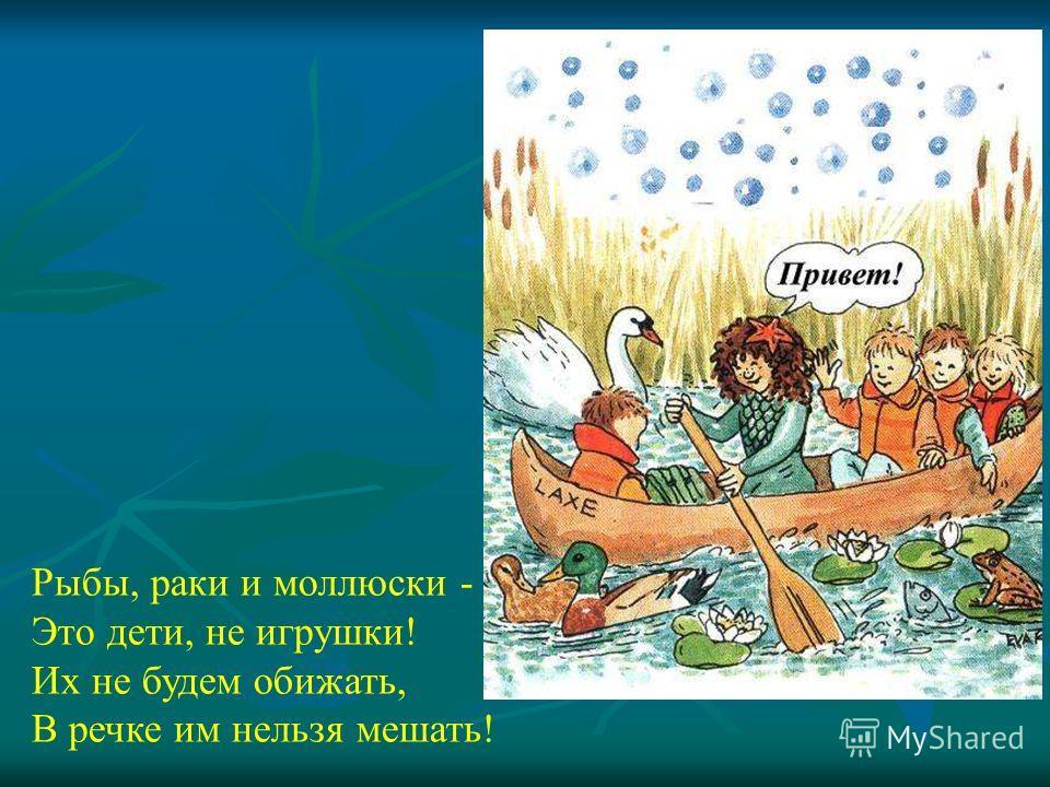 Рыбы, раки и моллюски - Это дети, не игрушки! Их не будем обижать, В речке им нельзя мешать! Рыбы, раки и моллюски - Это дети, не игрушки! Их не будем обижать, В речке им нельзя мешать!