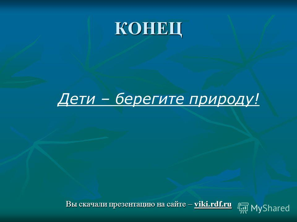 КОНЕЦ Вы скачали презентацию на сайте – viki.rdf.ru Дети – берегите природу!