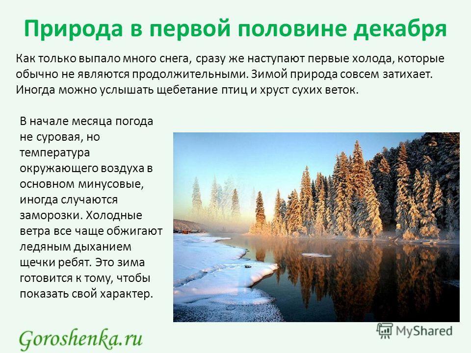 Природа в первой половине декабря Как только выпало много снега, сразу же наступают первые холода, которые обычно не являются продолжительными. Зимой природа совсем затихает. Иногда можно услышать щебетание птиц и хруст сухих веток. В начале месяца п