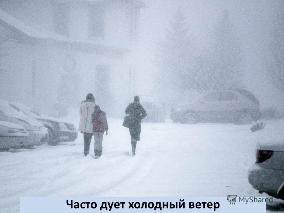Часто дует холодный ветер