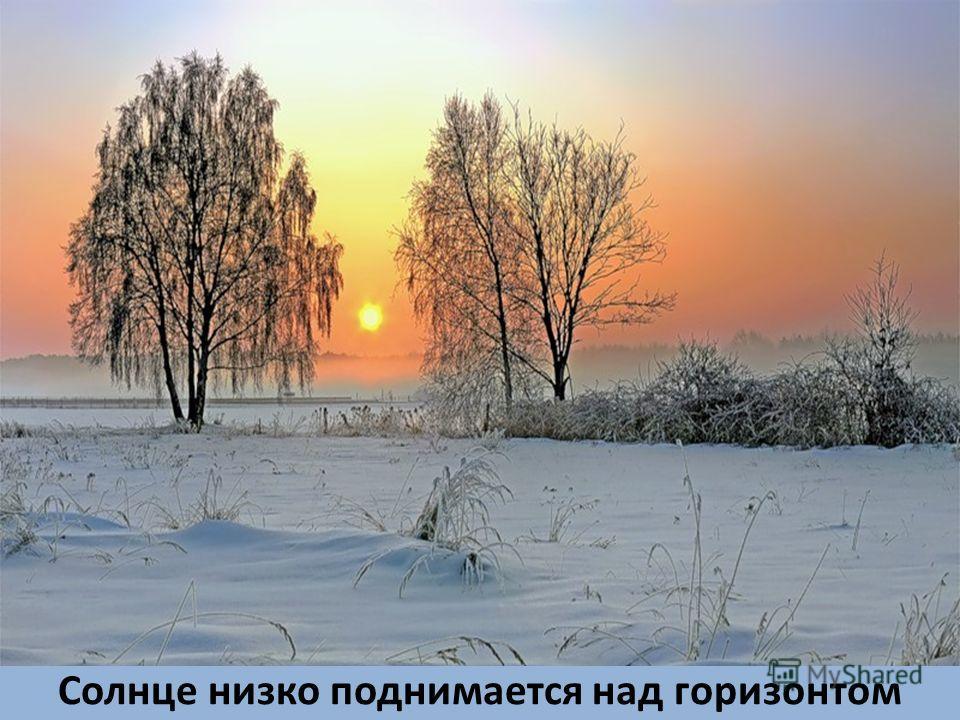 Солнце низко поднимается над горизонтом