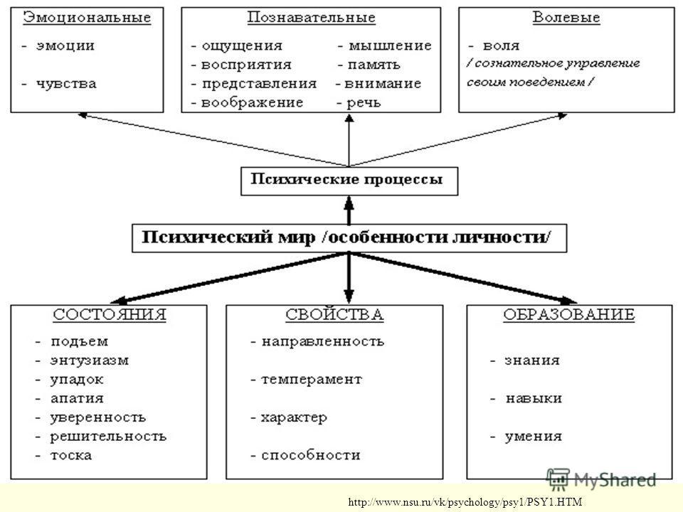http://www.nsu.ru/vk/psychology/psy1/PSY1.HTM