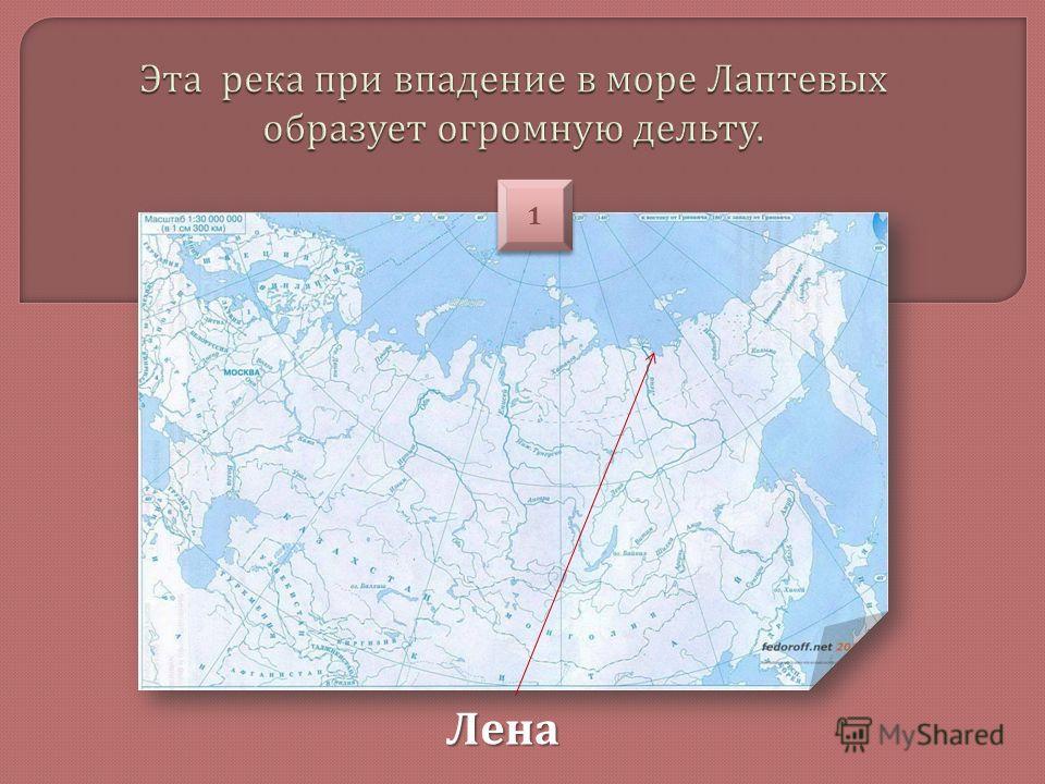 Лена 1 1
