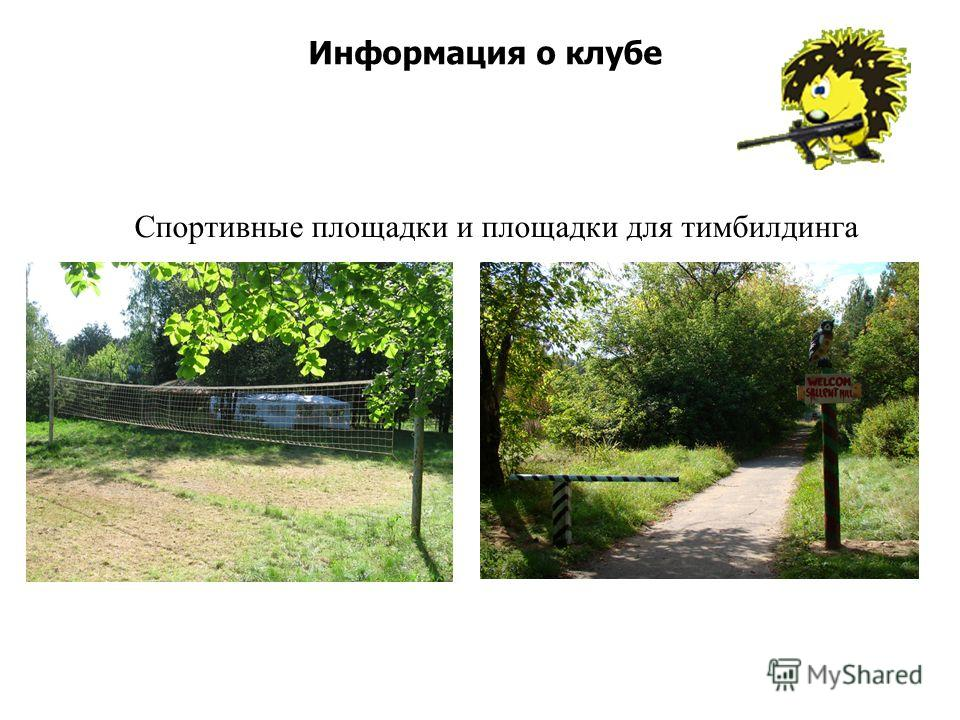 Информация о клубе Спортивные площадки и площадки для тимбилдинга