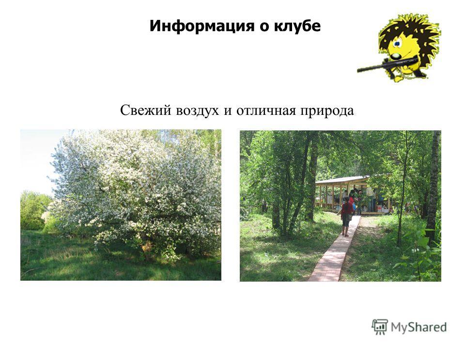 Информация о клубе Свежий воздух и отличная природа