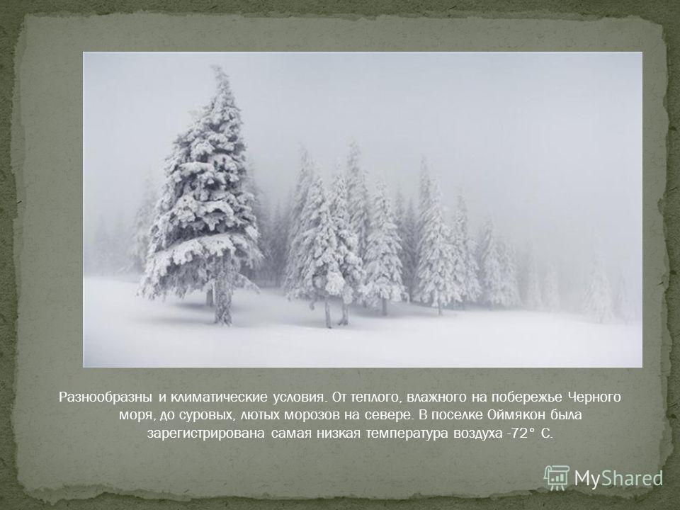 Побывать на Байкале, самом глубоком озере на планете. Байкал – крупнейшее хранилище пресной воды. Вода Байкала отличается необыкновенной чистотой и прозрачностью.