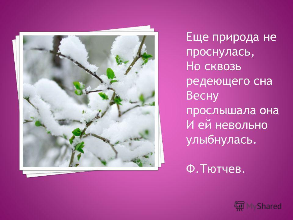 Еще природа не проснулась, Но сквозь редеющего сна Весну прослышала она И ей невольно улыбнулась. Ф.Тютчев.