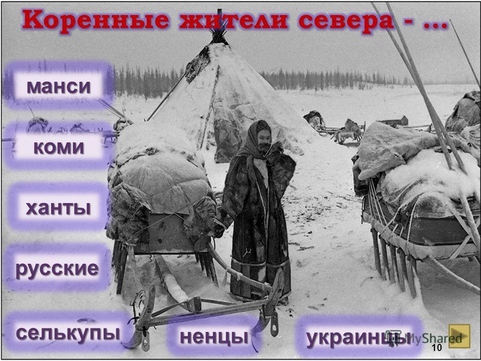 ханты ненцы коми манси селькупы русские украинцы 10