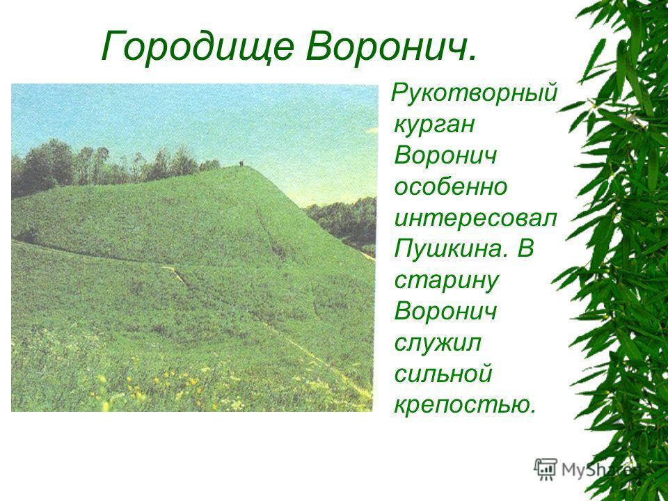 Городище Воронич. Рукотворный курган Воронич особенно интересовал Пушкина. В старину Воронич служил сильной крепостью.