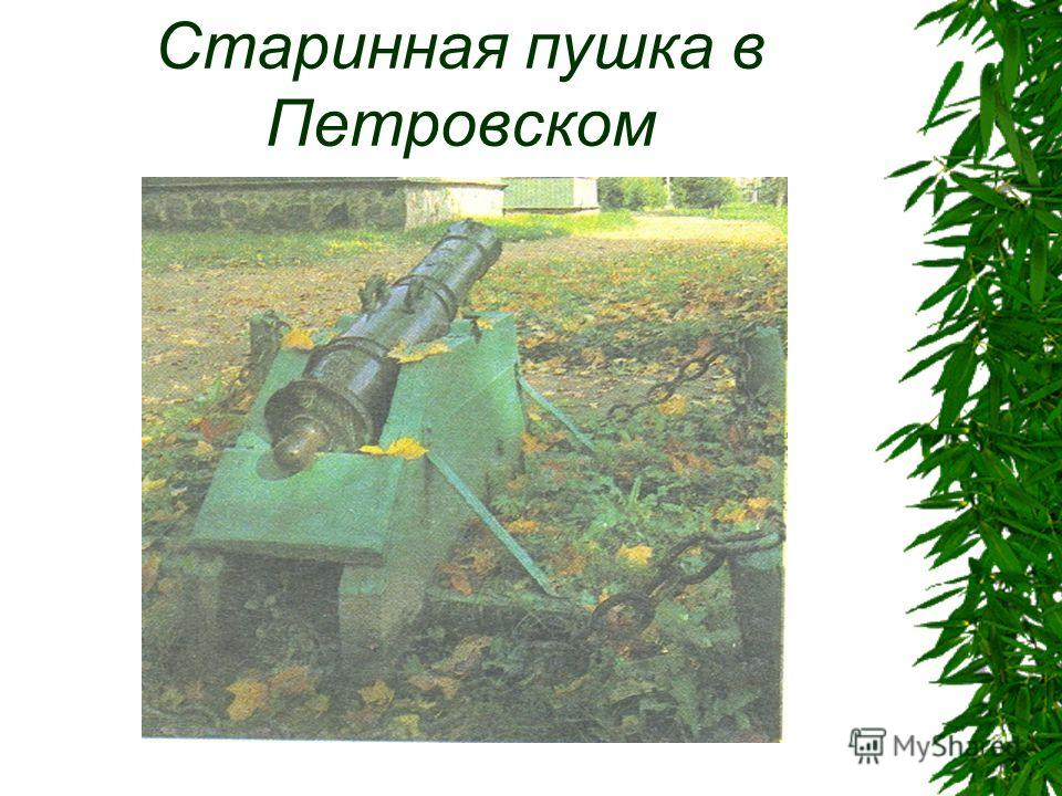 Старинная пушка в Петровском