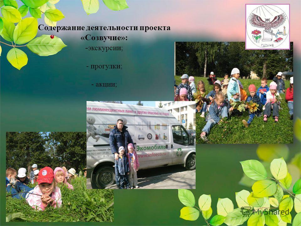 Содержание деятельности проекта «Созвучие»: - экскурсии; - прогулки; - акции;