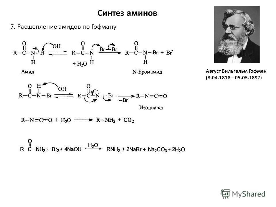 Синтез аминов 7. Расщепление амидов по Гофману Август Вильгельм Гофман (8.04.1818 – 05.05.1892)