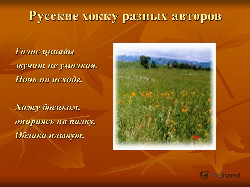 Русские хокку разных авторов Голос цикады звучит не умолкая. Ночь на исходе. Хожу босиком, опираясь на палку. Облака плывут.