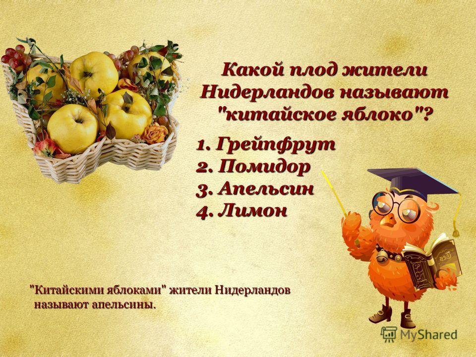 Какой плод жители Нидерландов называют китайское яблоко? 1. Грейпфрут 1. Грейпфрут 2. Помидор 2. Помидор 3. Апельсин 3. Апельсин 4. Лимон 4. Лимон Китайскими яблоками жители Нидерландов называют апельсины.