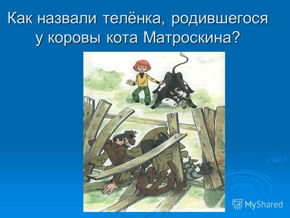 Как назвали телёнка, родившегося у коровы кота Матроскина?