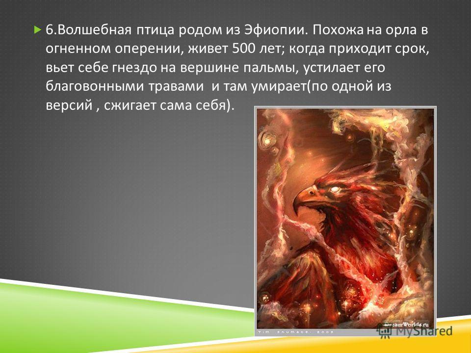 6. Волшебная птица родом из Эфиопии. Похожа на орла в огненном оперении, живет 500 лет ; когда приходит срок, вьет себе гнездо на вершине пальмы, устилает его благовонными травами и там умирает ( по одной из версий, сжигает сама себя ).
