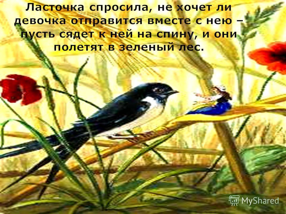 Ласточка спросила, не хочет ли девочка отправится вместе с нею – пусть сядет к ней на спину, и они полетят в зеленый лес.