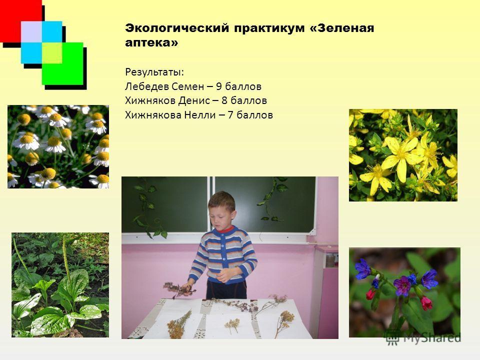 Экологический практикум «Зеленая аптека» Результаты: Лебедев Семен – 9 баллов Хижняков Денис – 8 баллов Хижнякова Нелли – 7 баллов