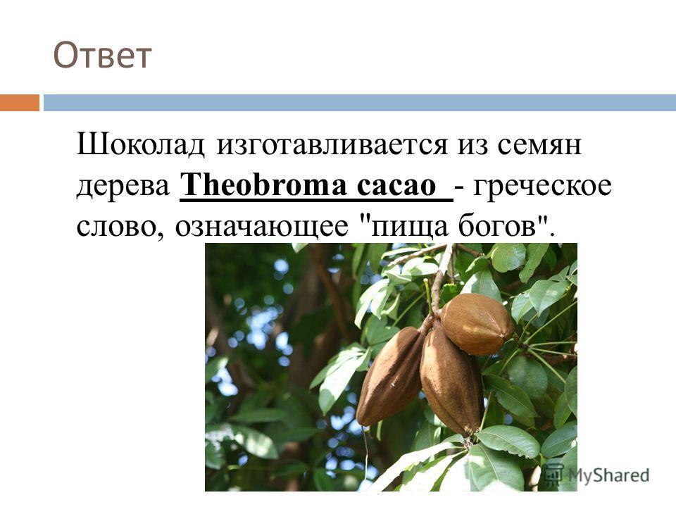 Ответ Шоколад изготавливается из семян дерева Theobroma cacao - греческое слово, означающее пища богов .