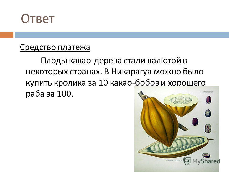 Ответ Средство платежа Плоды какао - дерева стали валютой в некоторых странах. В Никарагуа можно было купить кролика за 10 какао - бобов и хорошего раба за 100.