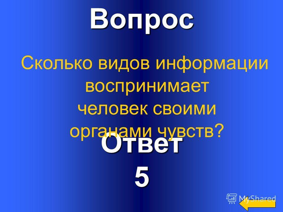Вопрос Ответ5 Сколько видов информации воспринимает человек своими органами чувств?