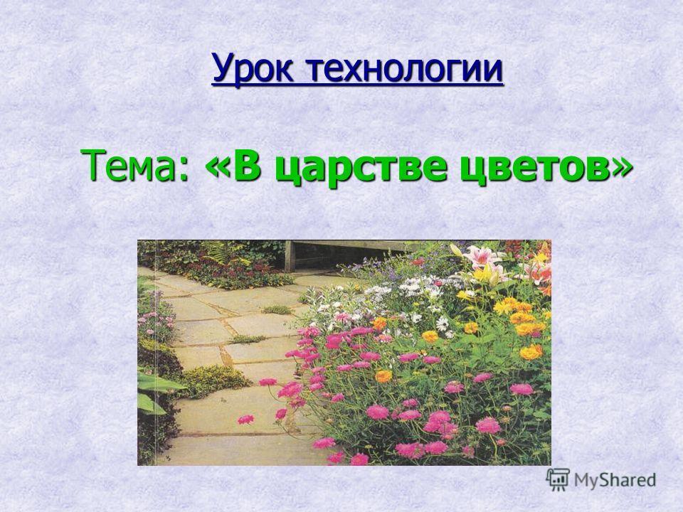 Урок технологии Тема: «В царстве цветов»