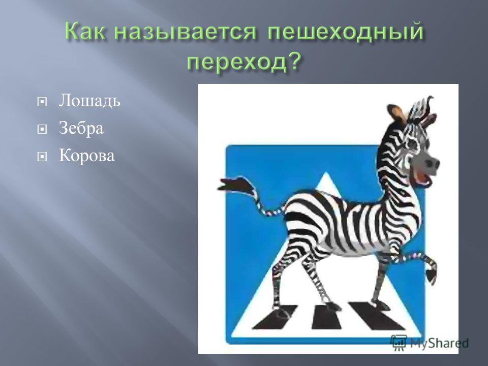 Лошадь Зебра Корова