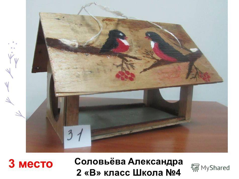 Соловьёва Александра 2 «В» класс Школа 4 3 место